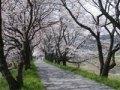 法勝寺城山公園・法勝寺川