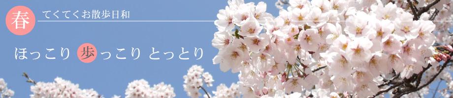 お花見特集-散策コース-