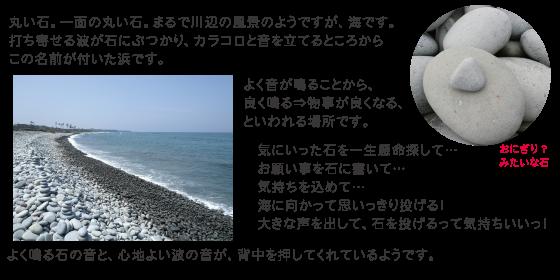 琴浦 鳴り石の浜