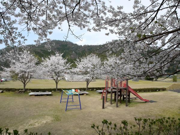 八頭・船岡竹林公園
