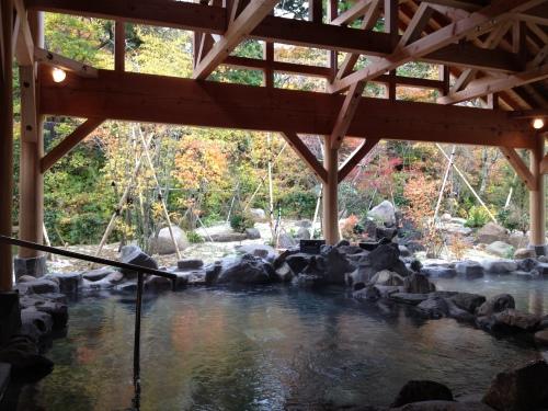 大山 火の神岳温泉 豪円湯院