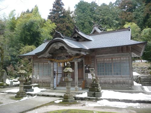 大石見神社・オハツキタイコイチョウ
