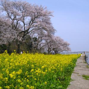 鳥取・青島公園