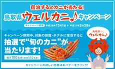 アイコン_鳥取県ウェルカニキャンペーン