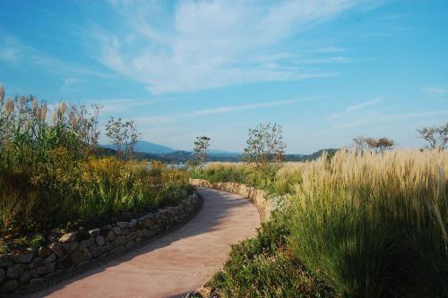 湖山池ナチュラルガーデン「とっとり晴れやか庭園」