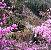 日野・滝山公園