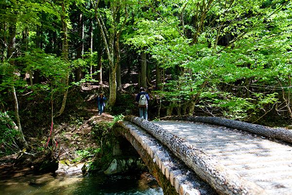 芦津渓谷散策