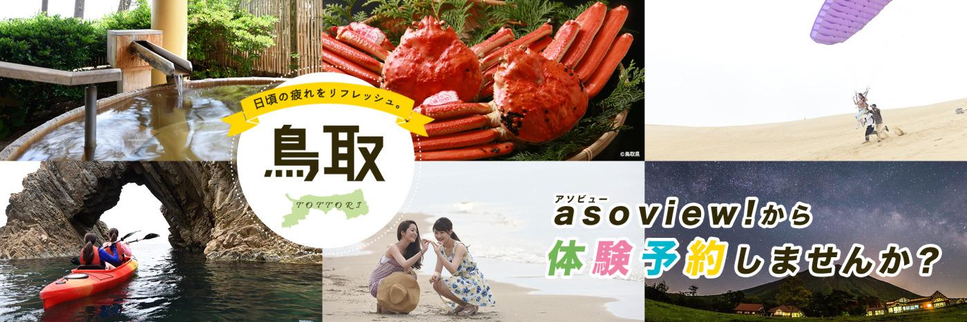 aoview鳥取