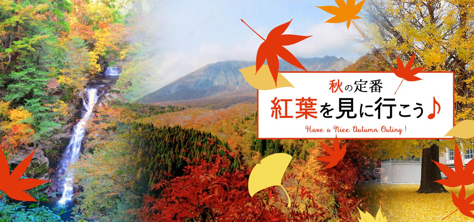 鳥取秋のおでかけ