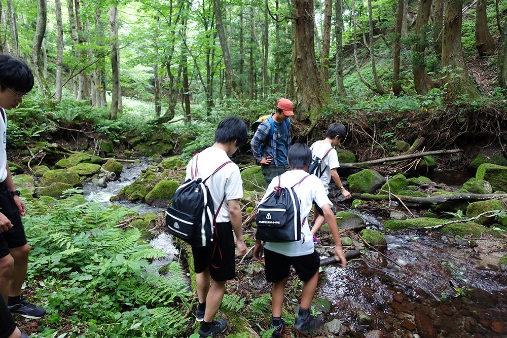 自然源流トレイル1