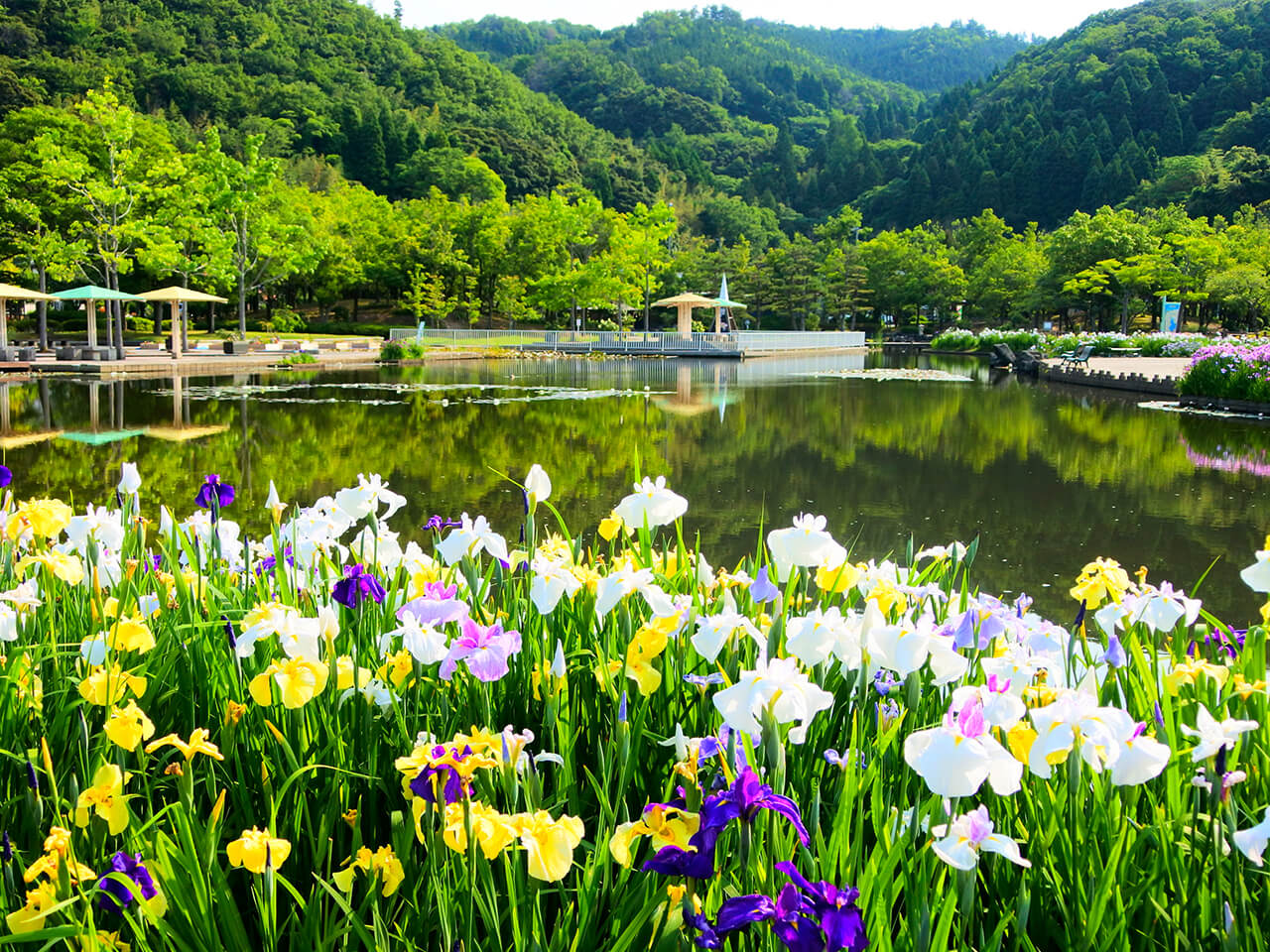東郷湖羽合臨海公園周辺