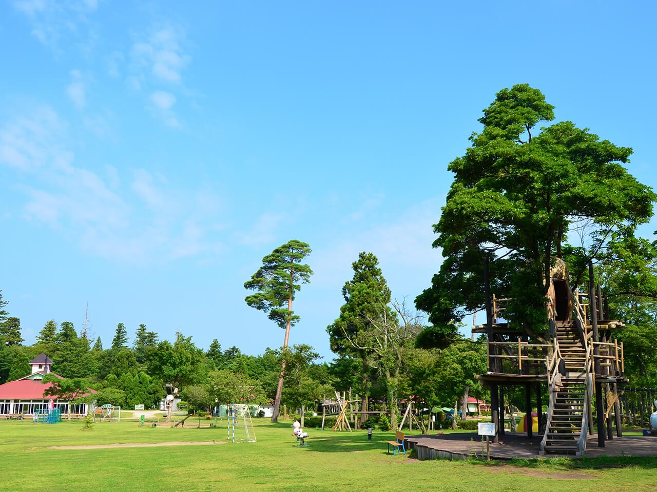 森の国(大山町)