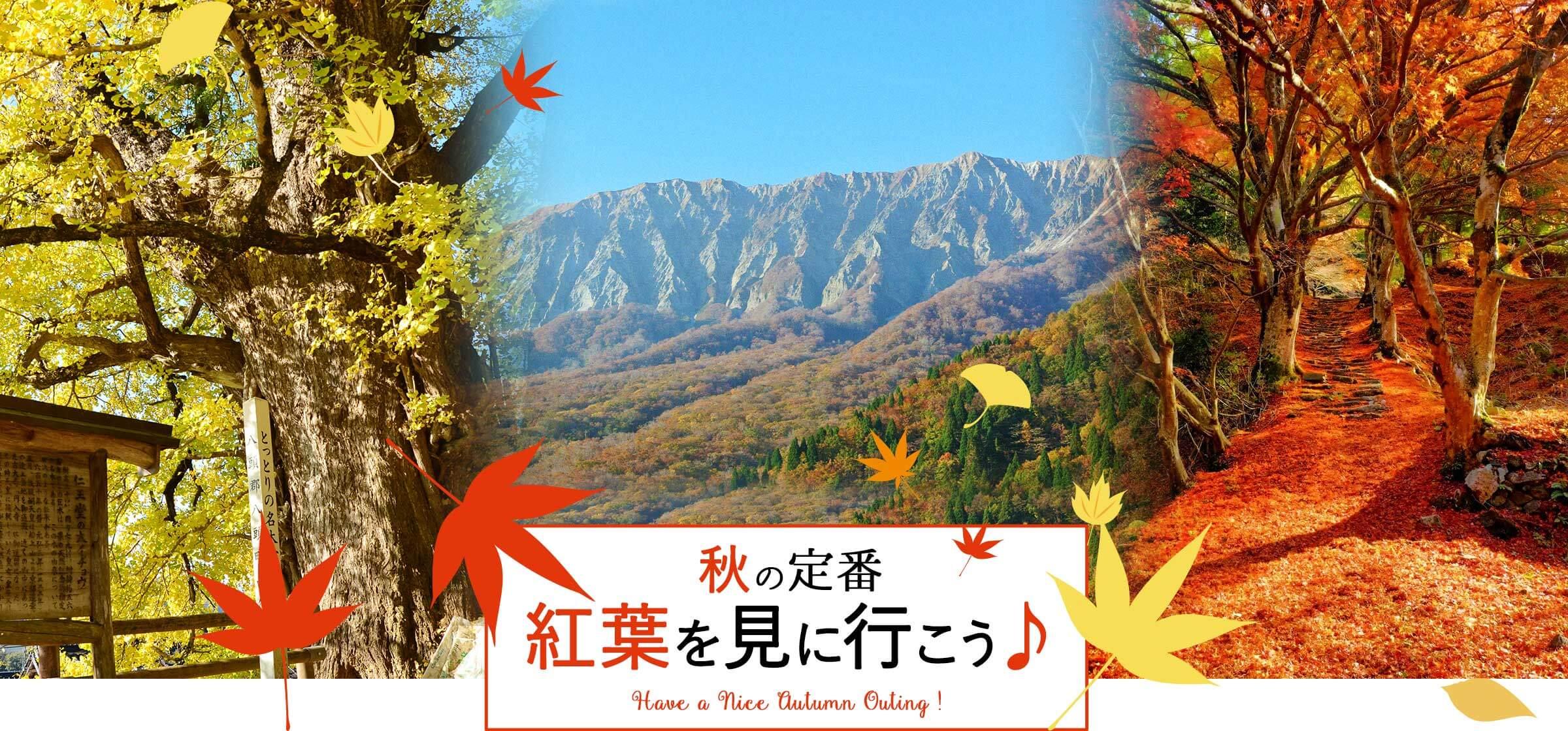 鳥取県 秋のおでかけ 秋の定番 紅葉を見に行こう