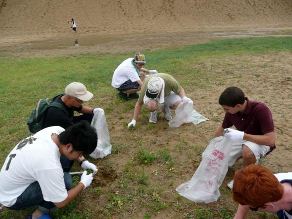 鳥取砂丘除草体験