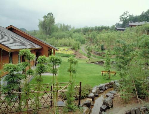 竹林浴、キャンプ
