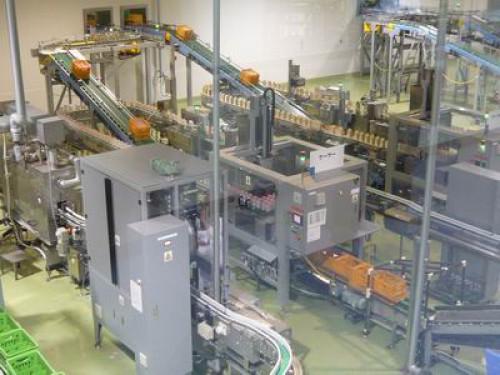 牛乳・ヨーグルト工場見学